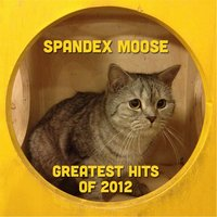 Greatest Hits of 2012 — Spandex Moose