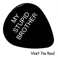 What You Need — My Stupid Brother
