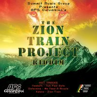 The Zion Train Project Riddim — сборник