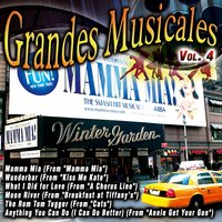 Grandes Musicales (Mamma Mía) — The Musical Street Band