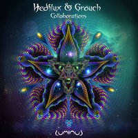 Collaborations — Hedflux, Grouch