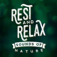 Rest & Relax: Sounds of Nature — Rest & Relax Nature Sounds Artists, Sleep Sounds of Nature, Sonidos de la naturaleza Relajacion, Sonidos de la naturaleza Relajacion|Rest & Relax Nature Sounds Artists|Sleep Sounds of Nature