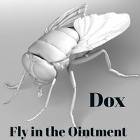 Fly in the Ointment — Dox