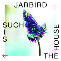 Such Is The House — Jarbird