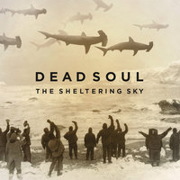 The Sheltering Sky — Dead Soul