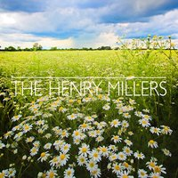 Daisies — The Henry Millers