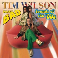 Super Bad Sounds Of The '70s — Tim Wilson