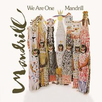 We Are One — Mandrill