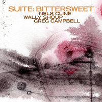 Suite: Bittersweet — Nels Cline/Wally Shoup/Greg Campbell