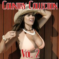 Country Collection, Vol. 2 — Johnny Cash, Frankie Lane, Wille Nelson, Frankie Lane, Johnny Cash, Wille Nelson