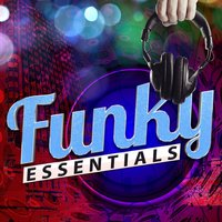 Funky Essentials — Funk