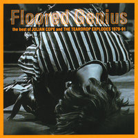 Floored Genius: The Best Of Julian Cope And The Teardrop Explodes 1979-91 — Julian Cope, The Teardrop Explodes