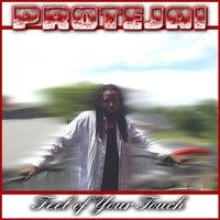 Feel of Your Touch — Protejai