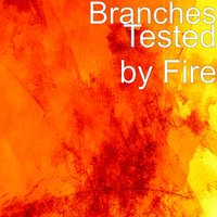 Tested by Fire — Branches