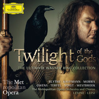 Twilight Of The Gods - The Ultimate Wagner Ring Collection — James Levine, Jonas Kaufmann, Bryn Terfel, Eric Owens, Fabio Luisi, Stephanie Blythe