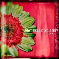 What Would You Do? [feat. Melissa Collins] — Groovesoup, Melissa Collins