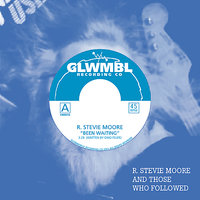 R. Stevie Moore and Those Who Followed, Vol. 1 — R. Stevie Moore, Dino Felipe