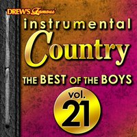 Instrumental Country: The Best of the Boys, Vol. 21 — Hit Co. Masters
