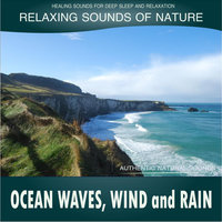 Ocean Waves, Wind and Rain: Relaxing Sounds of Nature — Healing Sounds for Deep Sleep and Relaxation