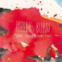 Prairie Burn — Chad Taylor, Sean Conly, Mara Rosenbloom, The Mara Rosenbloom Trio