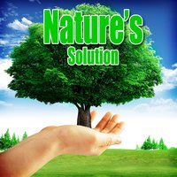 Nature's Solution: Piano Music and Nature Sounds — Nature Sounds Nature Music
