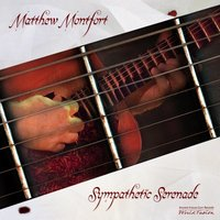 Sympathetic Serenade for Scalloped Fretboard Guitar — Matthew Montfort