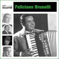 Platinum Collection — Feliciano Brunelli