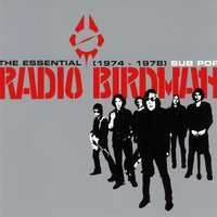The Essential Radio Birdman (1974-1978) — Radio Birdman