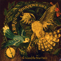 All Around the Briar Patch — J. Bird and the Sparrowhawk