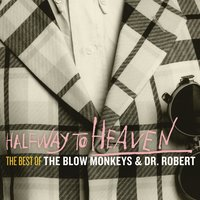 Halfway to Heaven: The Best of The Blow Monkeys & Dr Robert — The Blow Monkeys