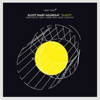 Quintet — Nate Wooley, Ches Smith, Brad Jones, Elliott Sharp Aggregat, Terry L. Green