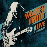ALIVE in Amsterdam — Walter Trout