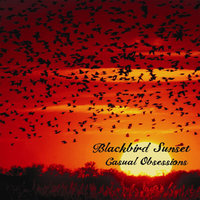Casual Obsessions — Blackbird Sunset