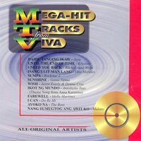 Mega Hit Tracks From Viva — сборник