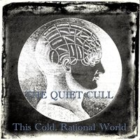 This Cold, Rational World — The Quiet Cull