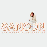 Les moments importants - Best of Véronique Sanson — Véronique Sanson