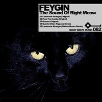 The Sound Of Right Meow — Feygin