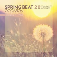 Spring Beat Occasion [20 Deep-House Smoothies], Vol. 3 — сборник