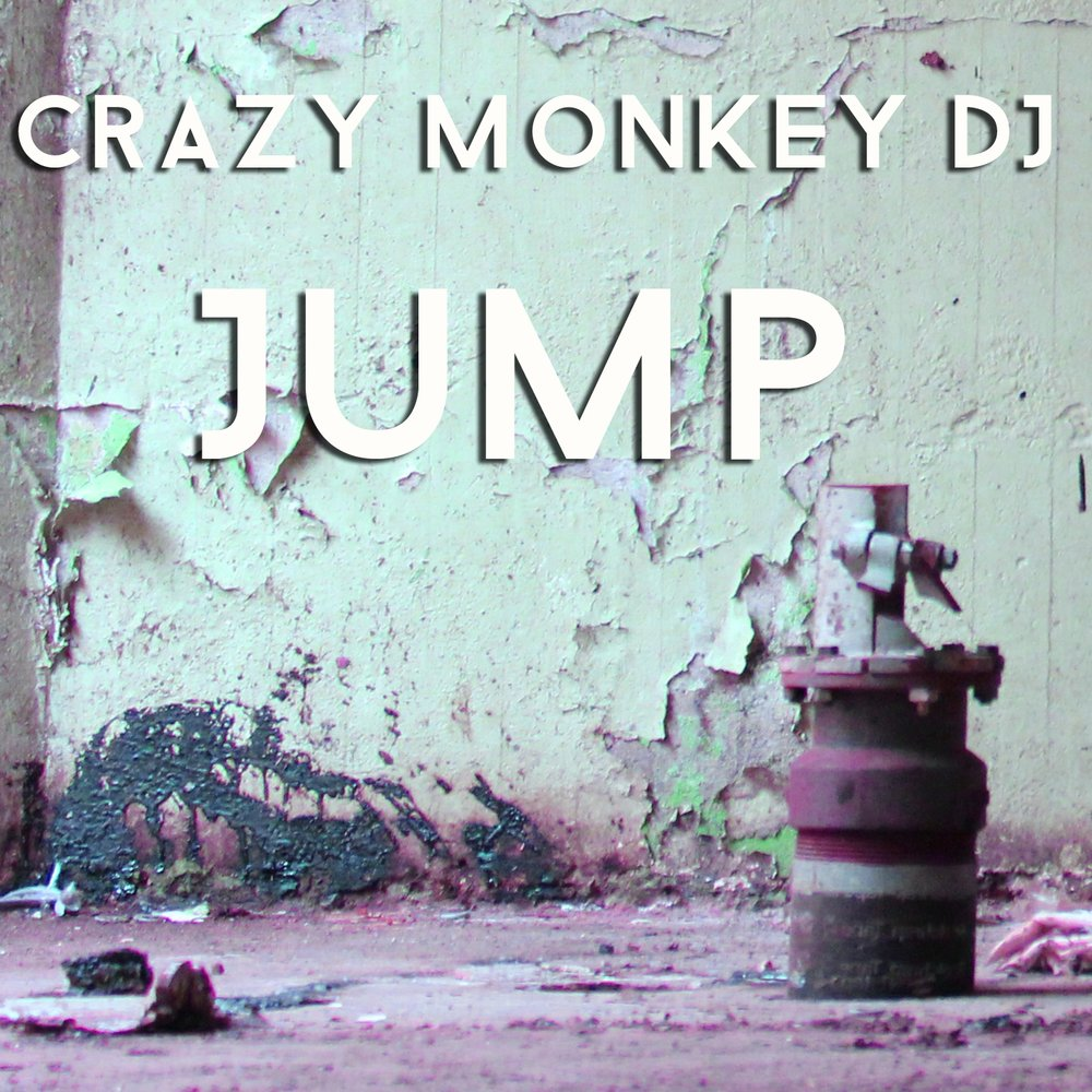 Crazy monkey музика