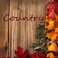 Country Instrumental Songs: Release Me — Instrumental Players