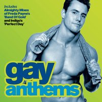 Almighty Presents: Gay Anthems 2 — сборник