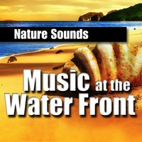 Music at the Water Front (Music and Nature Sound) — Звуки природы