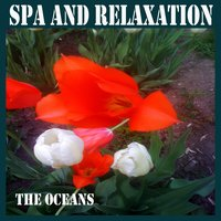 Spa and Relaxation — The Oceans