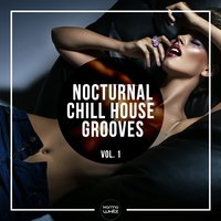 Nocturnal Chill House Grooves, Vol. 1 — сборник