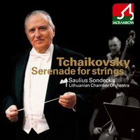 Tchaikovsky: Serenade for String Orchestra, Andante Cantabile — Пётр Ильич Чайковский, Saulius Sondeckis, Anton Stepanovich Arensky, Lithuanian Chamber Orchestra, Saulius Sondeckis|Lithuanian Chamber Orchestra, Sergei Zakharovich Aslamazjan