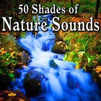 50 Shades of Nature Sounds — Nature Sound Series