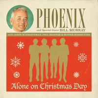 Alone On Christmas Day — Phoenix