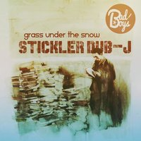 Grass under the snow — STiCKlER DUB-J