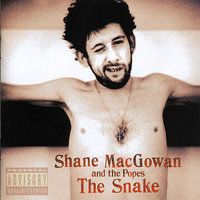The Snake — Shane MacGowan, The Popes