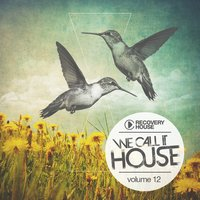 We Call It House, Vol. 12 — сборник
